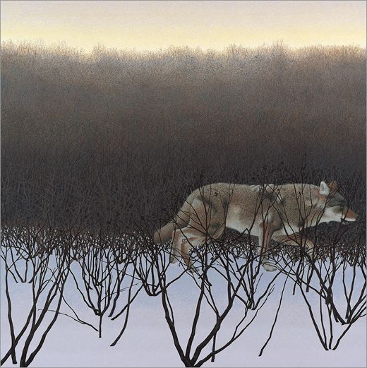 Alex Colville (1920-2013), Coyote and Alders, 1995, Canadian. Acrylic on hardboard. 68 × 68 cm. Courtesy of A. C. Fine Art Inc (http://www.alexcolville.ca/), Halifax, Nova Scotia, Canada. © 2015 A. C. Fine Art Inc.
