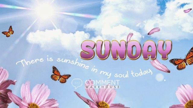 Sunday there is sunshine in my soul today   Sunday Graphics   Days of the Week Images Happy Sunday Pics Hello Sunday Images Comments Quotes Enjoy Sunday #SundayGraphics #DaysoftheWeekGraphics #HappySunday