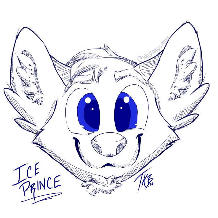 Commission for someone from Furry Amino  Headshot sketch