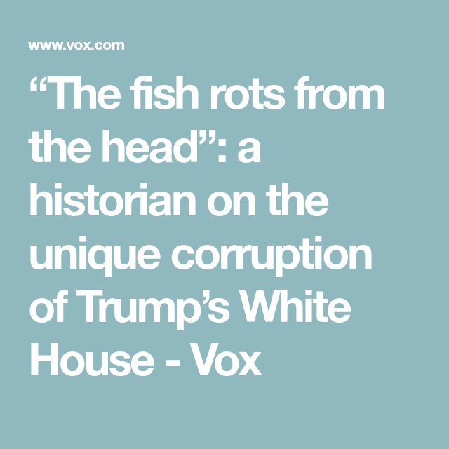 """""""The fish rots from the head"""": a historian on the unique corruption of Trump's White House - Vox"""