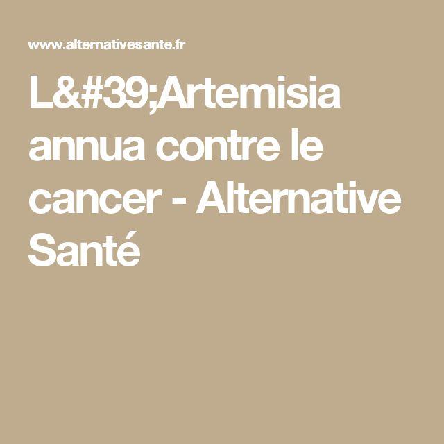 L'Artemisia annua contre le cancer - Alternative Santé