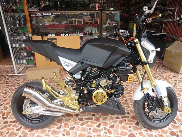 Honda Grom Honda Grom Forum motorcycle