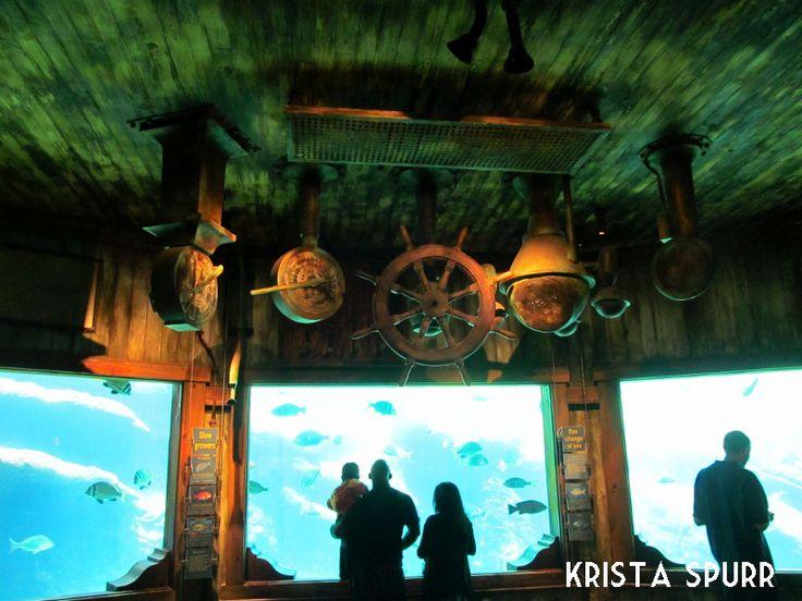 uShaka Marine World Sea World aquarium