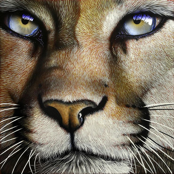 Image result for Big cat artist happy saturday gifs