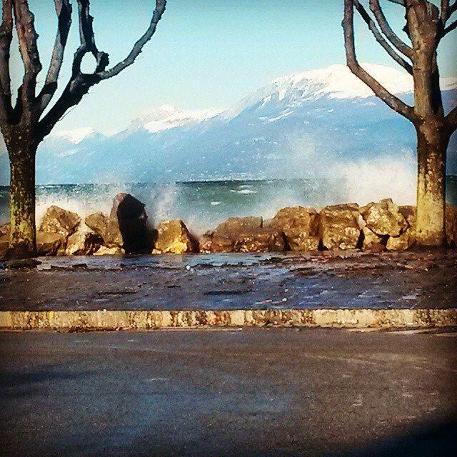 #lake #mountain #monte #baldo #snow #desenzano #garda #home #gardalake #blue #water #agitato #trees #fountain #beauty #wind #nature #instanature #instamoment #lungolago #novellaorchidea #novella #orchidea #raccontierotici #racconti #ebook #ricardo #tronco