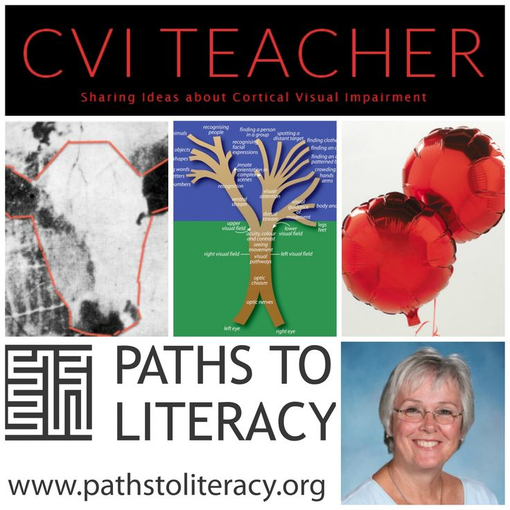 Resources   Paths to Literacy Useful blog if you are working with children with Cerebral Visual Impairment lots of practical ideas, you can receive a weekly newsletter with updates