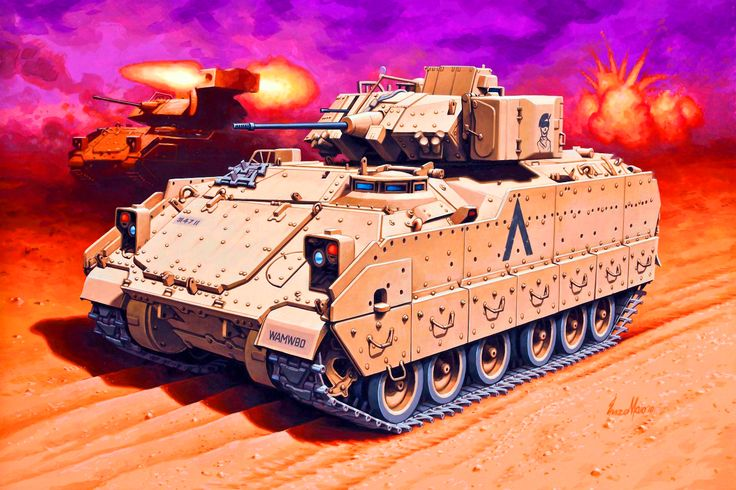 Bradley fighting vehicles, Iraq