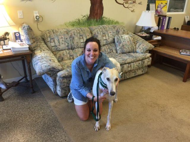 Minute with his new mom, Carol. Congratulations to this new #fureverfamily! #adoptaretiredracer #gpi #greyhound #greyhoundpetsinc #greyhoundsmakegreatpets
