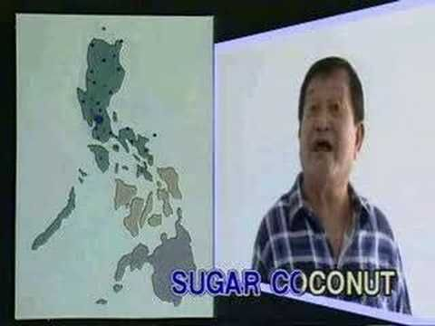 ▶Used this song in elementary school, memorising all the Philippine provinces. There's a lot to remember!   Yoyoy Villame - Philippine Geography - YouTube