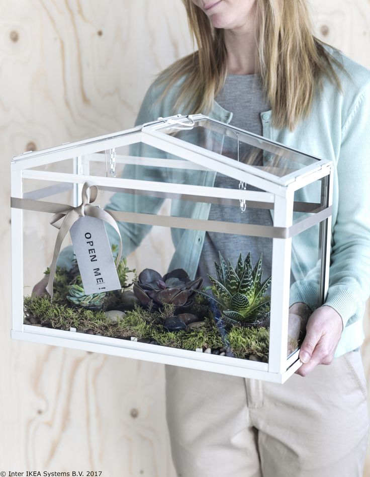 Cu ajutorul serei SOCKER, poți avea mica ta grădină acasă. Ea oferă un mediu optim pentru încolțirea semințelor sau creșterea plantelor. Dacă vrei să afli cum poți duce o viață mai sustenabilă acasă, vizitează platforma noastră: www.IKEA.ro/o_viata_sustenabila.