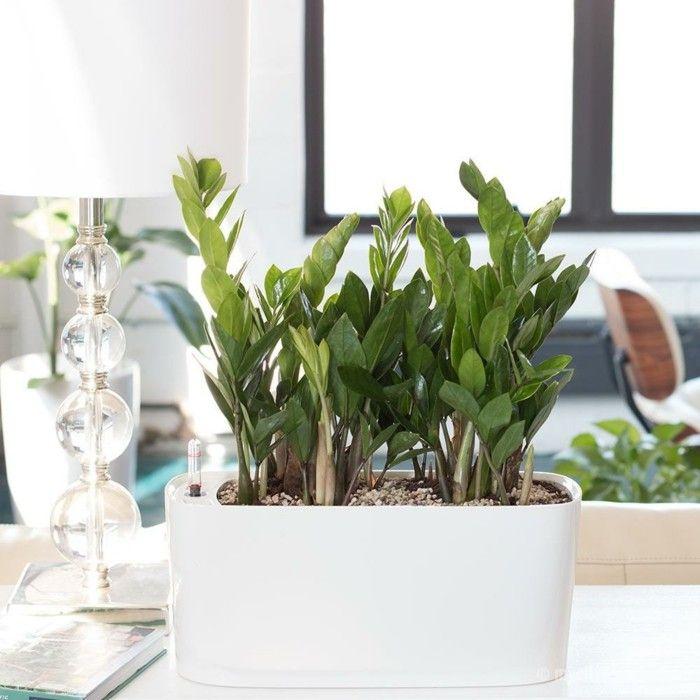 die besten 25 blumenkasten fensterbank ideen auf pinterest blumenkasten fenster blumenkasten. Black Bedroom Furniture Sets. Home Design Ideas
