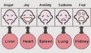 Emotions - chinese medicine De Traditionele Chinese Geneeskunde gaat uit van basis-emoties, die allen gerelateerd zijn aan een bepaald orgaan. Deze emoties zijn: boosheid, vreugde, zorgelijkheid, verdriet, angst en schrik (of shock). Ieder orgaan heeft een corresponderende emotie