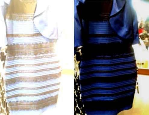 Women's clothing dresses, tops, blazers, pantsuits, Petite clothing  #TheDress Vote now WhiteGold or BlueBlack  http://www.planetgoldilocks.com/womens_clothing.htm #WHITEGOLD #BLUEBLACK #whitegolddress #blueblackdress #survey