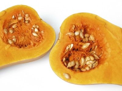 Saving Squash Seeds: Learn About Squash Seed Harvesting & Storage - Have you ever grown a blue ribbon hubbard squash or other variety but the next year the crop was less than stellar? Perhaps you have wondered if, by collecting seeds from the prized squash, you might get another crop just as amazing. What is the best method then of squash seed collection and saving those premium squash seeds?