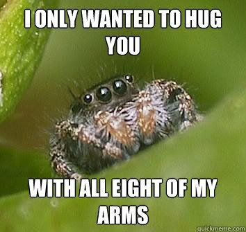 Jumping Spider Meme | Oooh! Like the misunderstood spider meme!
