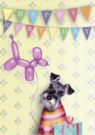 Happy Birthday FYNN                                                                                                                                                                                 More