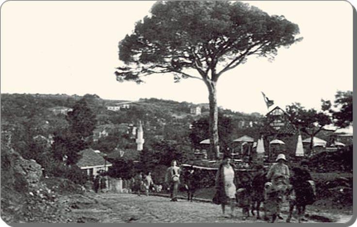 Çamlıca yolunda.... - 1920 ler