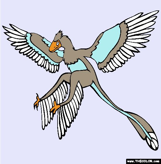 microraptor coloring page