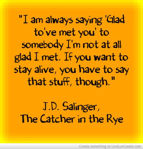 the struggles of the caulfield siblings in the catcher in the rye a novel by j d salinger I had read catcher in the rye before franny and zooey,  franny and zooey is jd salinger's  and zinging pessimism as holden caulfield the novel starts with.