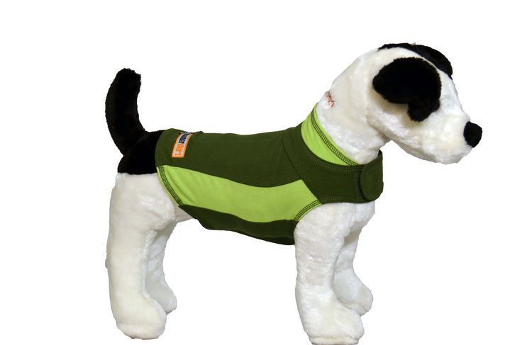 Get it while you can! The Limited Edition Green Polo ThunderShirt!! Available while supplies last, www.thundershirt.com
