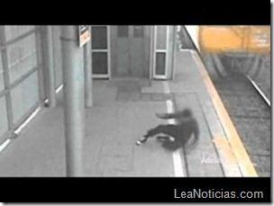 Cruza frente a un tren de alta velocidad y se salva milagrosamente (video) - http://www.leanoticias.com/2011/08/29/cruza-frente-a-un-tren-de-alta-velocidad-y-se-salva-milagrosamente-video/