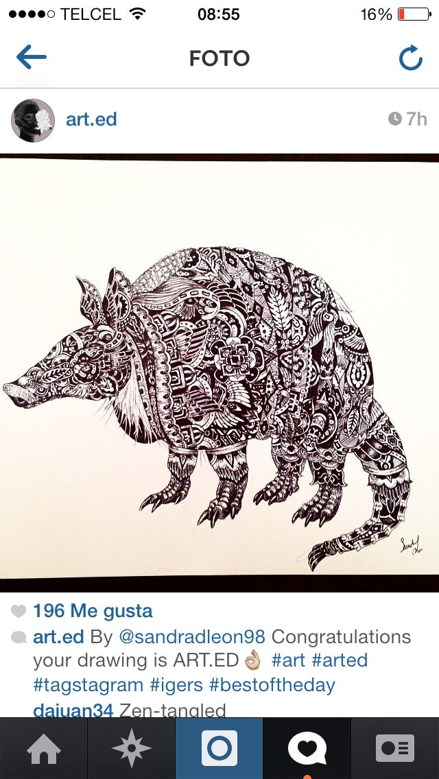 Armadillo tattoo pen drawing made by me