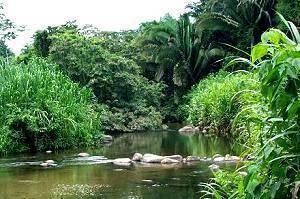 Cockscomb Basin Wildlife Sanctuary – Belize