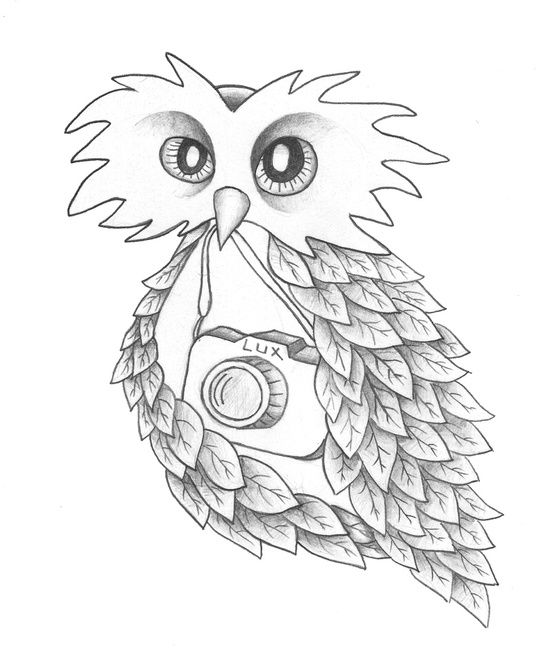 The Owl. Sil Elorduy
