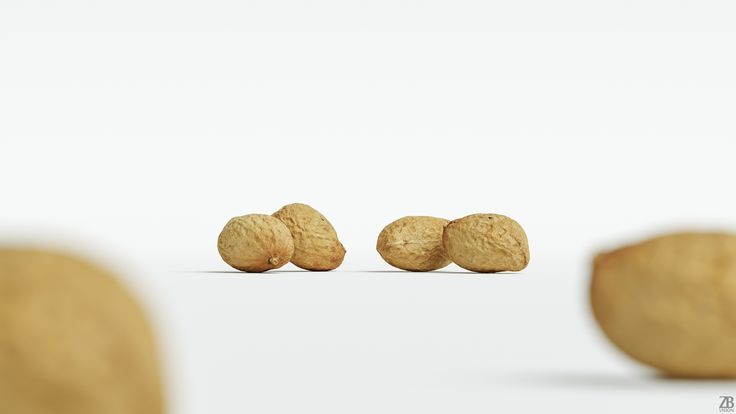 Peanut 3D model is available here:  https://3docean.net/item/peanut-001/20516745