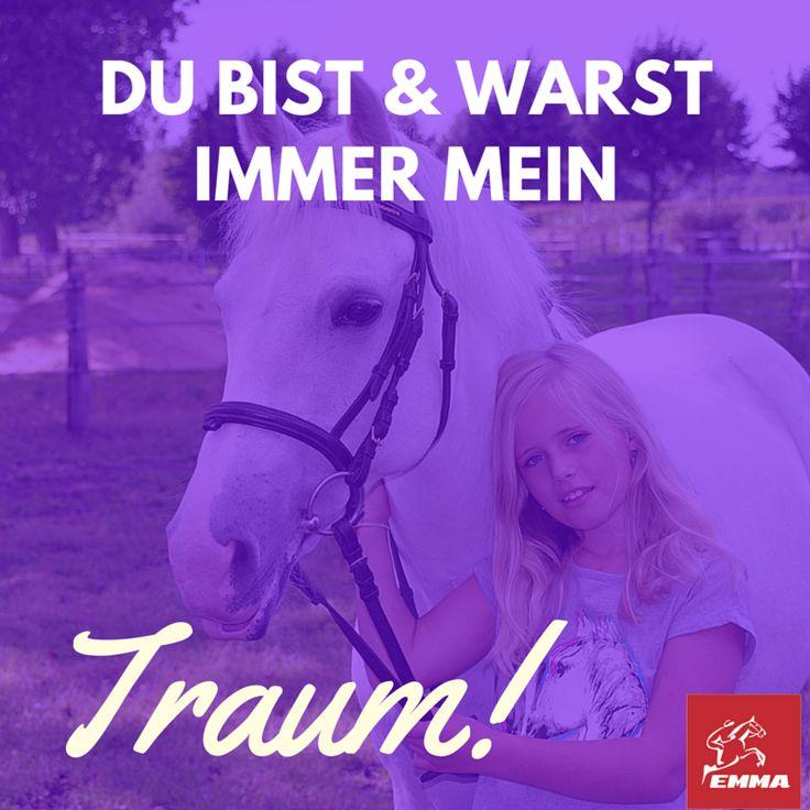 Pferdesprüche & Vielseitigkeit-emma-pferdefuttershop.de(8) 2