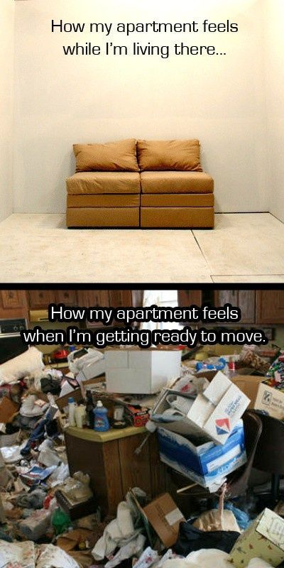 How everyone's apartment feels when it is time to pack for a move | Moving Day Humor