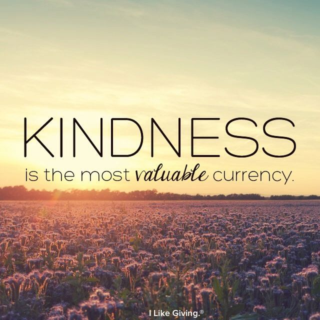 Whole Life Quote Calculator: 622 Best ...kindness & Laughter & Smile Quotes Images On