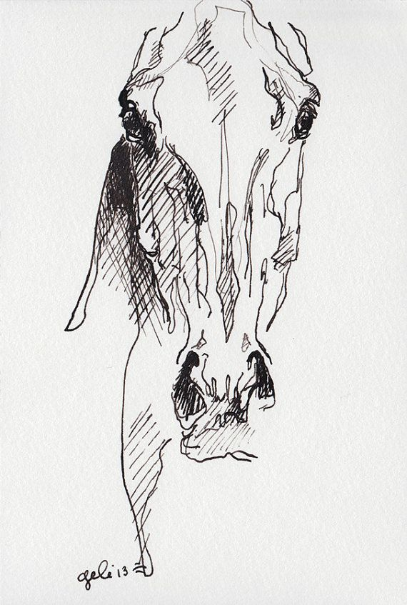 Alert 1 Horse Head Black Ink Original Drawing by benedictegele