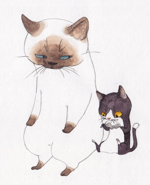 How to Draw Critters and Creatures, Study Resources for Art Students ,  Cats