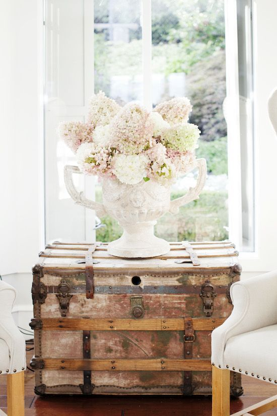 hydrangeas on an antique trunk