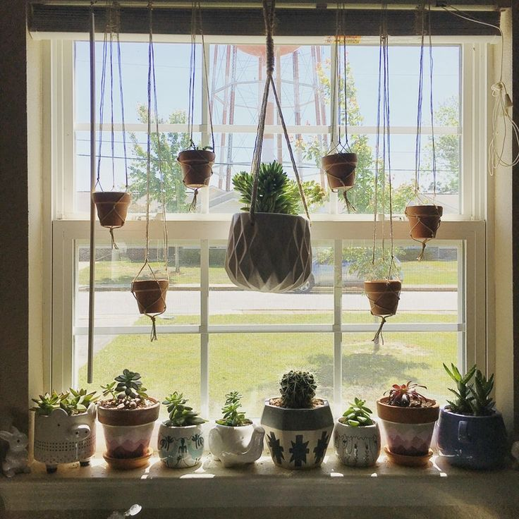 I'm running out of room on my window sills, so I made a
