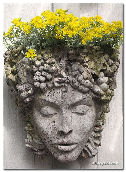 ✤ container garden  The Woman In Golden Yellow  by Debbie Teashon   Her head is adorned with a golden halo of Sedum 'Cape Blanco' flowers / green home