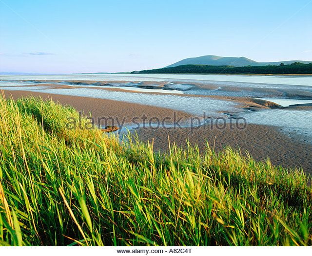 GB SCOTLAND DUMFRIES AND GALLOWAY THE NITH ESTUARY - Stock Image
