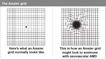 how to show 16 x 16 grid in photoshop