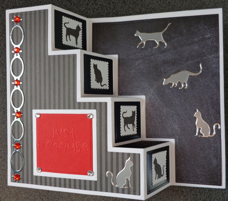 Pop up Step Card - Cats - Just Because