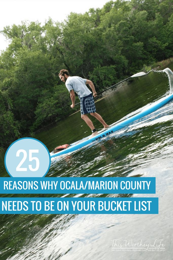 Ocala/Marion County has quite a lot to offer. Centrally located in Florida, this Florida Travel destination offers unique and memorable experiences for travelers looking to step outside the box and experience something new on their bucket list. Read on to see why Ocala/Marion County, Florida needs to be on your bucket list! [ad] #travel #floridatravel