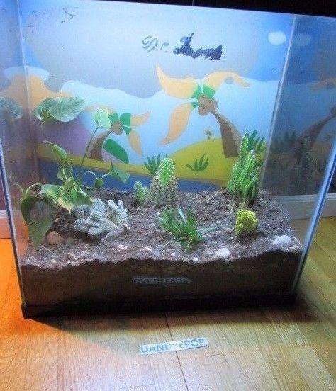 30 Gallon Tall Fish Tank Aquarium Terrarium Lizard Reptile Enclosure Habitat  #aquarium #terrarium #fishtank #lizard #reptile #dandeepop Find me at dandeepop.com