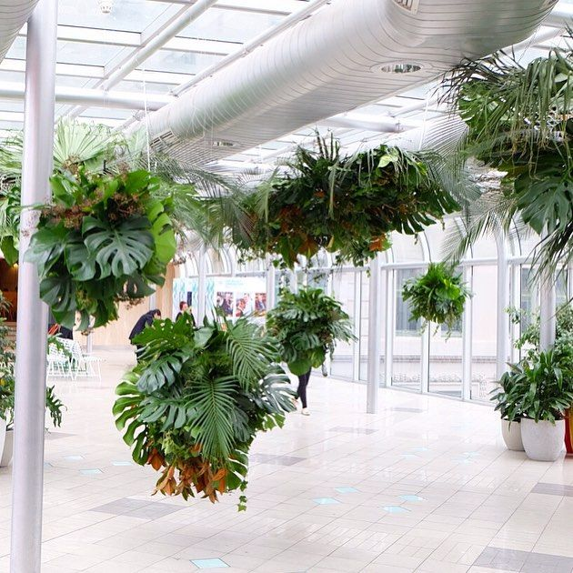 So so happy how our sky garden install @melbournecentral looks! Wish we could post all our pics of this amazing space! If you're in Melbourne drop by level 2 of the link bridge across Lonsdale St. to check it out!
