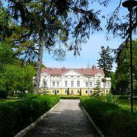 Pałac w Sasinie, dobry na spacer