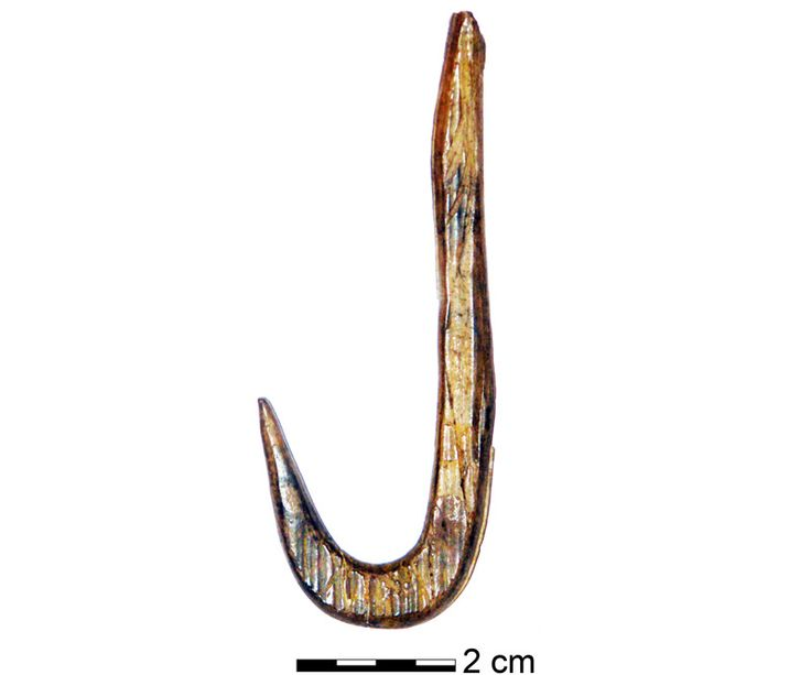 Archaeologists unearthed six fishhooks that date to 12,300 years ago, with one made from a 19,000-year-old mammoth tusk