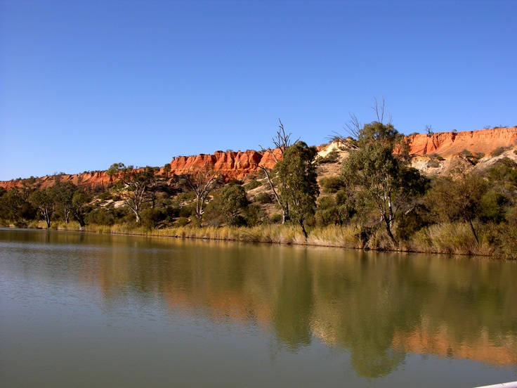 Murray River red cliffs