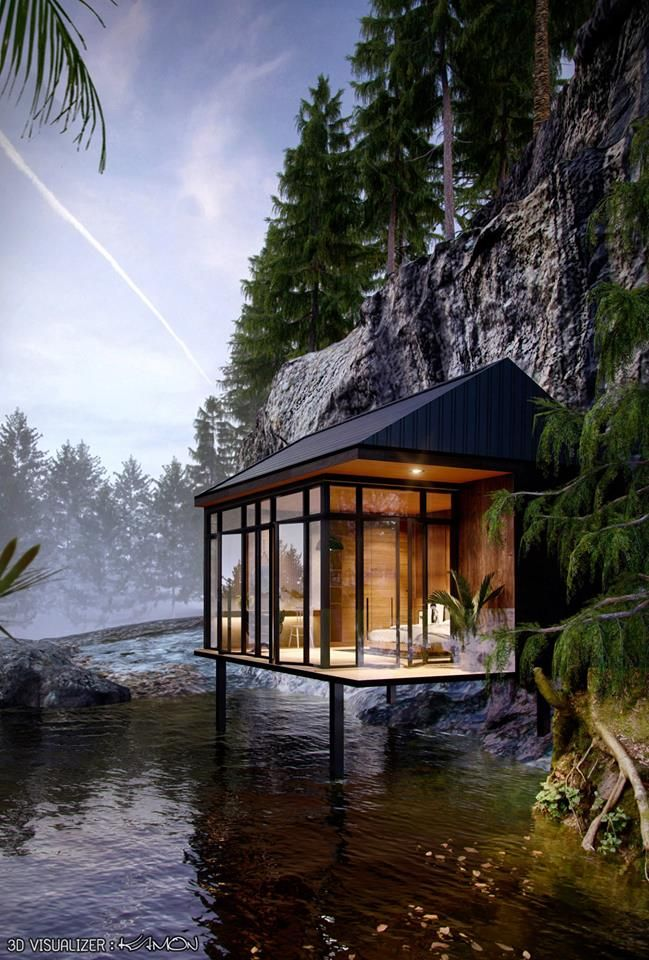 Deep Forest Forest House House Styles Waterfront Homes