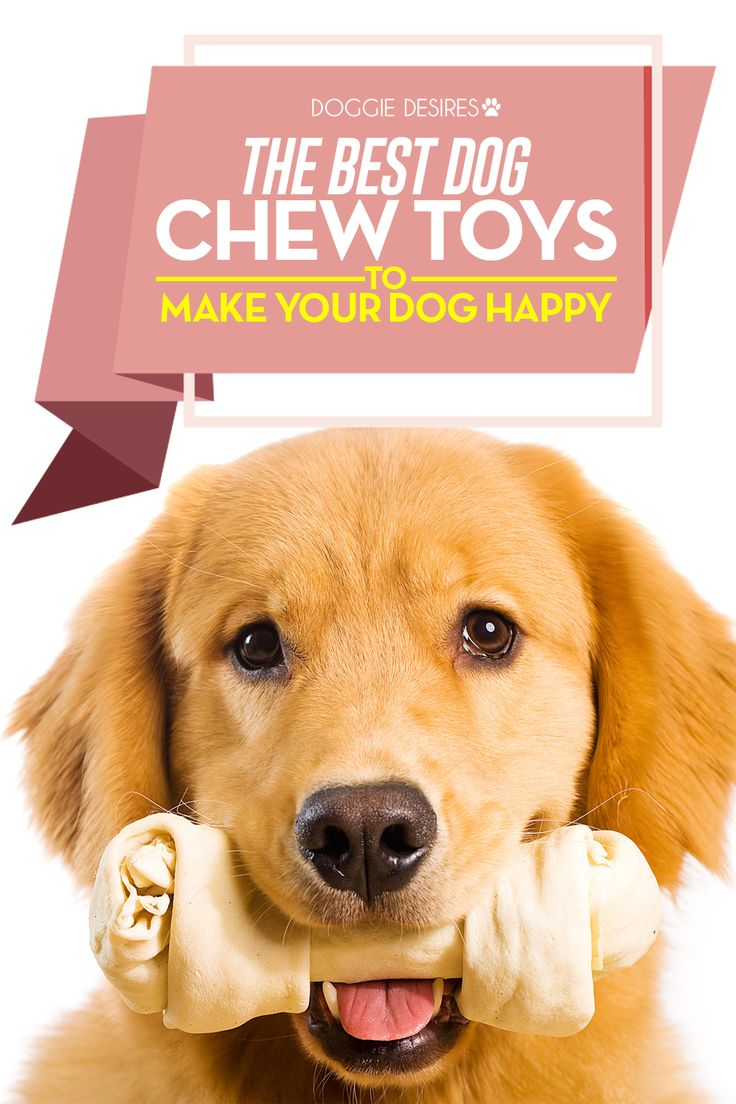 The best dog chew toys to make your dog happy >> http://doggiedesires.com/best-dog-chew-toys-make-dog-happy/