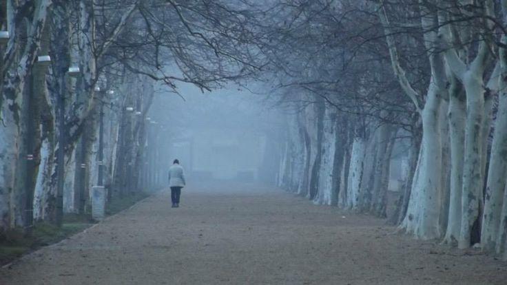 Kvassay promenade/Kvassay sétány