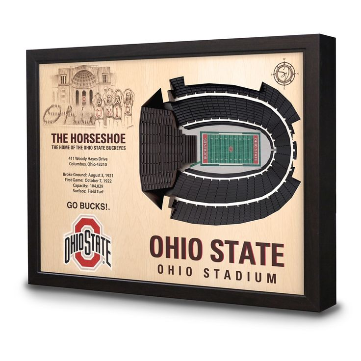 Ohio State Ohio Stadium 3D View Wall Art